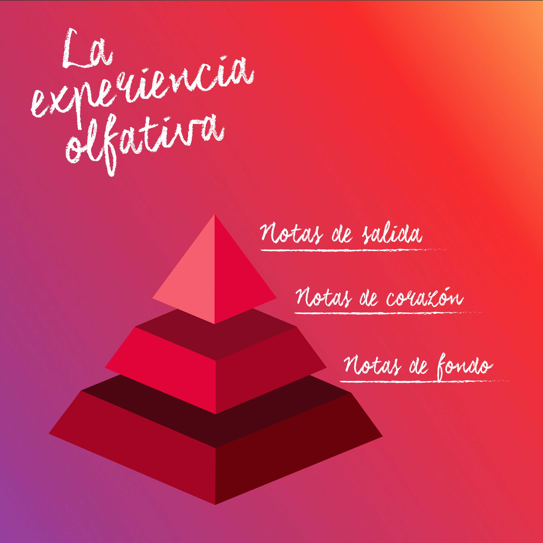 http://blog.bolesdolor.com/wp-content/uploads/2019/10/ig-notasde-fondo-fondo-rosa.jpg